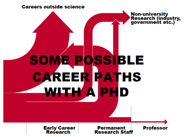 Multiple career paths await PhDs